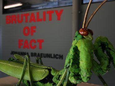 brutalityOfFact-Annusch.com